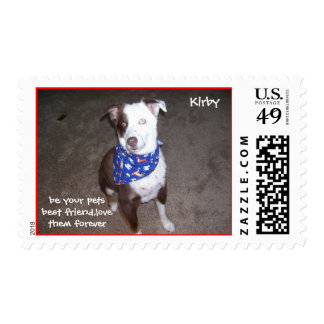 kirby 2, be your petsbest friend,lovethem forev... postage stamp