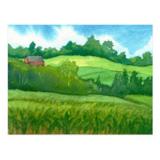 Kirby Vermont Corn Field Postcard