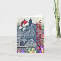 KIRBY'S CHRISTMAS WISH NOTECARD