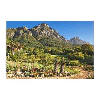 Kirstenbosch Botanic Gardens, Cape Town Canvas Print