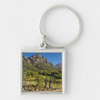 Kirstenbosch Botanic Gardens, Cape Town Key Chains