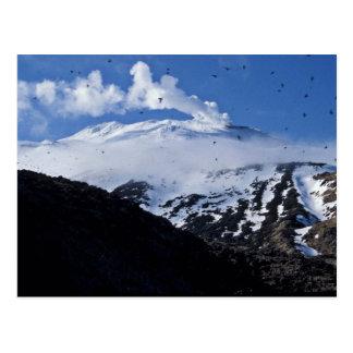 Kiska Island volcano and auklet colony Postcard