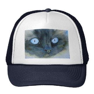 Kismet el gato de Ragdoll Gorras