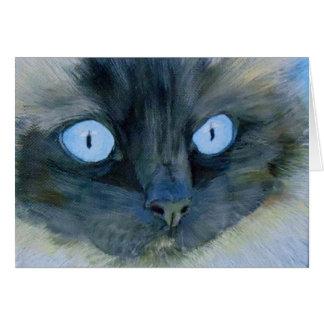 Kismet el gato de Ragdoll Tarjeta Pequeña
