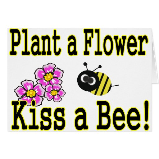 Kiss a bee with pink flowers card