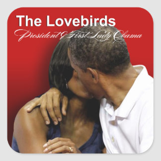 KISS CAM Lovebirds President & First Lady Obama Square Stickers