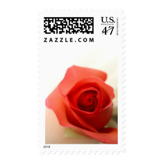 Kiss from a rose postage