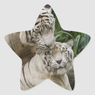 Kiss love peace and joy white tigers lovers star sticker