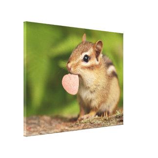 Kiss Me Baby Chipmunk Canvas Print