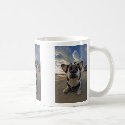 Kiss Me Classic White Coffee Mug