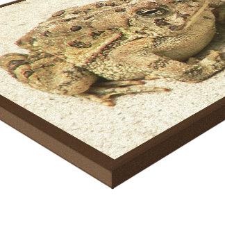 Kiss me frog canvas print