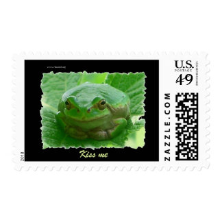 Kiss me - green frog close up postage