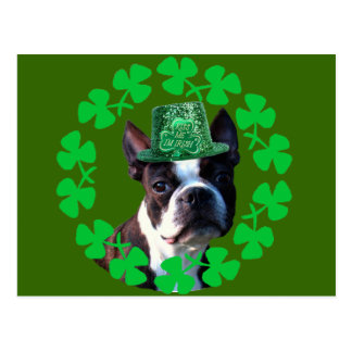 KIss me I' m Irish Boston Terrier postcard