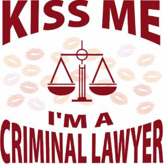 Kiss Me I'm A Criminal Lawyer Photo Cutouts