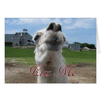 Kiss Me Llama Close-up Cards