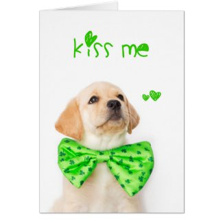 Kiss Me Yellow Labrador Puppy