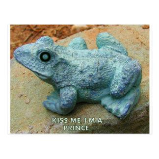 KISS ME YOU FOOL 2 POSTCARD