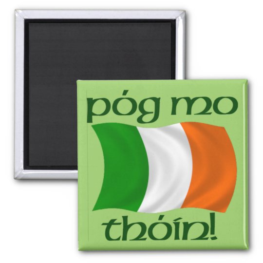 Kiss My Arse! (Irish Gaelic) Magnet