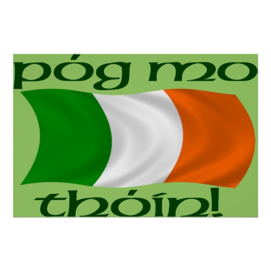 Kiss My Arse! (Irish Gaelic) Poster Print