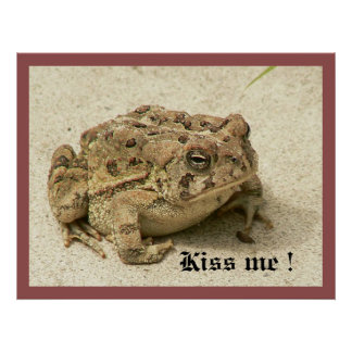 Kiss the Prince frog Poster