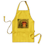KISS THIS COOK ADULT APRON