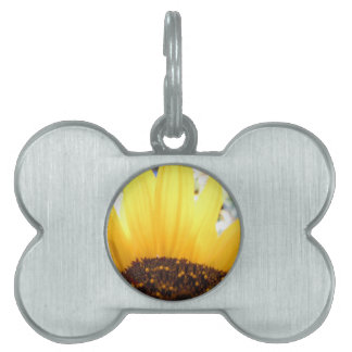 Kissed By The Sun Pet Name Tag