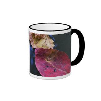 kissed & fell ringer coffee mug