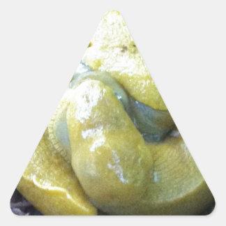 kissing banana slugs triangle sticker