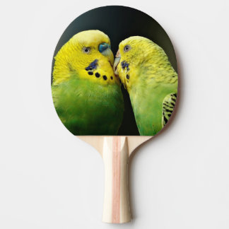 Kissing Budgie Parrot Bird Ping-Pong Paddle