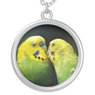 Kissing Budgie Silver Plated Necklace