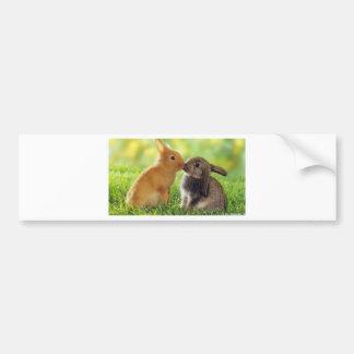 Kissing Bunnies Bumper Sticker