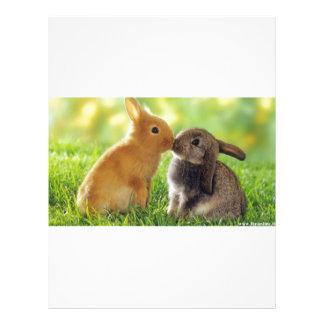 Kissing Bunnies Letterhead