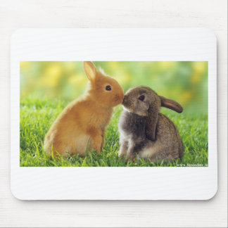 Kissing Bunnies Mouse Pad