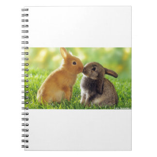 Kissing Bunnies Notebook
