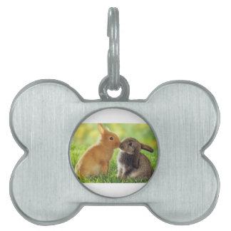 Kissing Bunnies Pet ID Tag