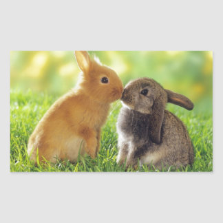 Kissing Bunnies Rectangular Sticker