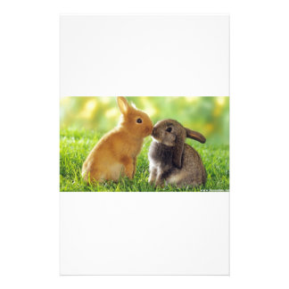 Kissing Bunnies Stationery