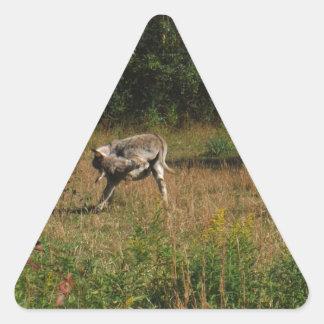 Kissing Butt Donkey Triangle Sticker