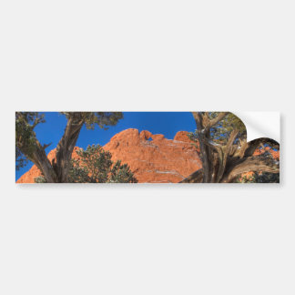 Kissing Camels Framed by Tree 01 Bumper Sticker