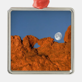 Kissing Camels Rock Formation with Full Moon Christmas Tree Ornaments