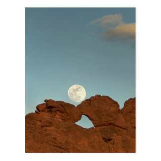 Kissing Camels Under Moon Post Card