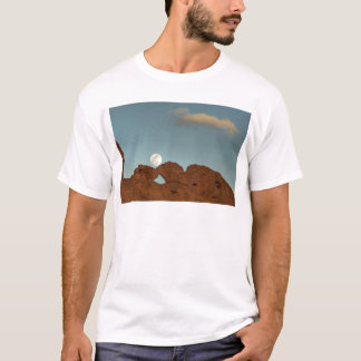 Kissing Camels Under Moon T-Shirt