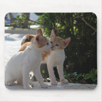 Kissing Cats Mouse Pad
