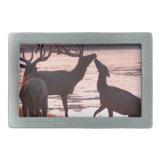 Kissing Elk Belt Buckle