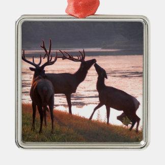 Kissing Elk Metal Ornament