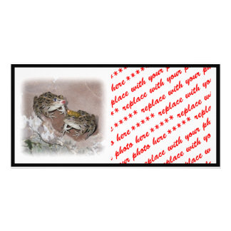 Kissing Frog & Her Frog Prince Card