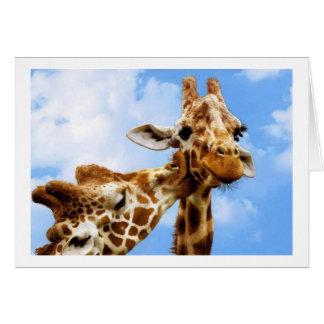 kissing Giraffes Card