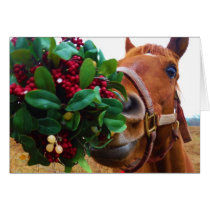 Kissing Horse under Mistletoe Card
