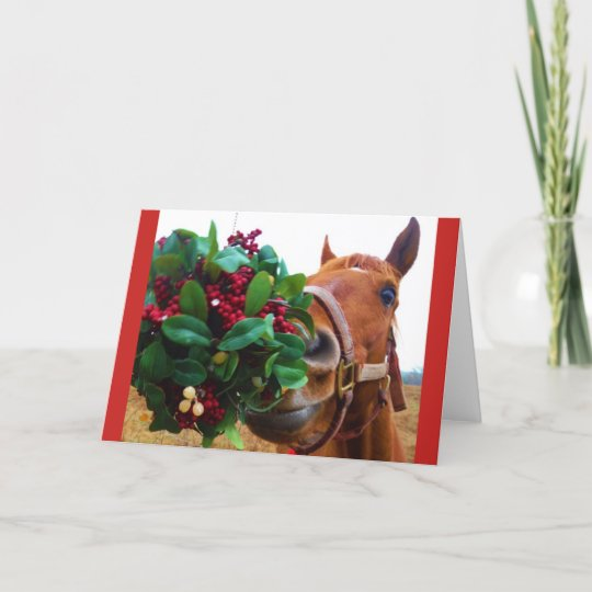 Kissing Horse Under Mistletoe Holiday Card
