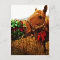 Kissing Horse under Mistletoe Postcard